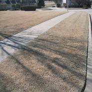 A Tulsa lawn in the winter months. It's dry, brown, and in need of lawn care.